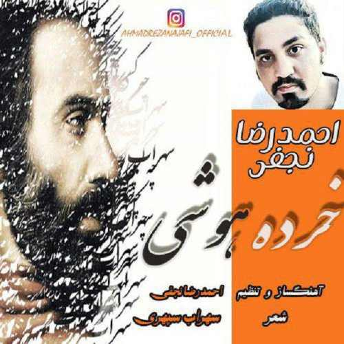 دانلود آهنگ جدید احمدرضا نجفی به نام خرده هوشی