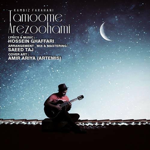 دانلود آهنگ جدید کامبیز فراهانی به نام تموم آرزوهامی
