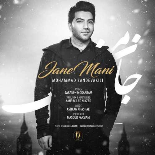 دانلود آهنگ جدید محمد زندوکیلی به نام جان منی