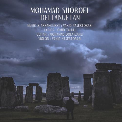 دانلود آهنگ جدید محمد شروعی به نام دلتنگتم