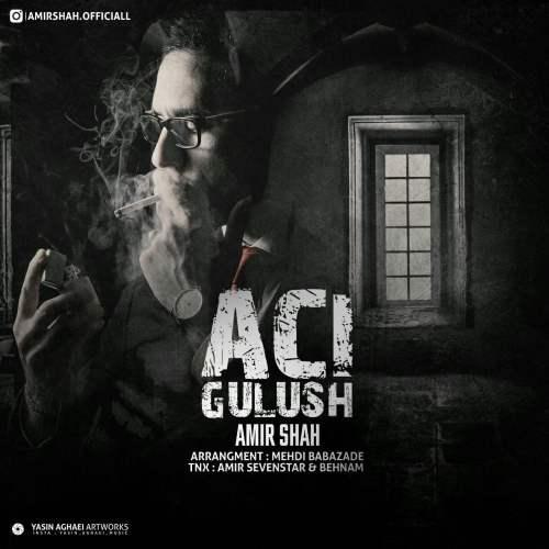 دانلود آهنگ جدید امیرشاه به نام Aci Gulush