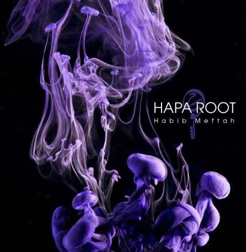 دانلود آهنگ جدید حبیب مفتاح به نام هپروت