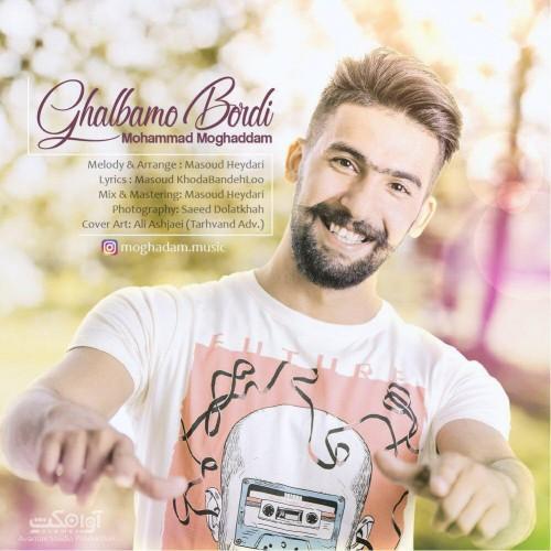 دانلود آهنگ جدید محمد مقدم به نام قلبمو بردی