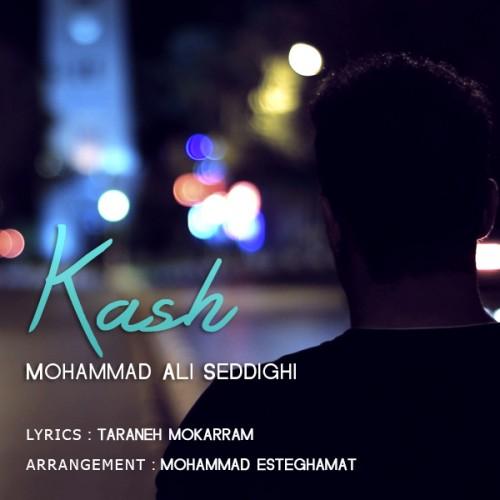 دانلود آهنگ جدید محمد علی صدیقی به نام کاش