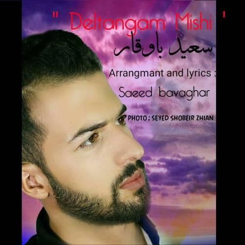 دانلود آهنگ جدید سعید باوقار به نام دلتنگم میشی