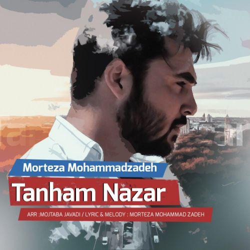 دانلود آهنگ جدید مرتضی محمدزاده به نام تنهام نزار